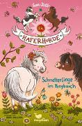 Cover-Bild zu Die Haferhorde - Schmetterlinge im Ponybauch von Kolb, Suza