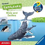 Cover-Bild zu Wieso? Weshalb? Warum? Erstleser. Wale und Delfine (Audio Download) von Noa, Sandra