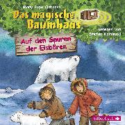 Cover-Bild zu Auf den Spuren der Eisbären von Pope Osborne , Mary