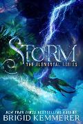 Cover-Bild zu Storm (eBook) von Kemmerer, Brigid