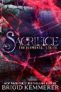 Cover-Bild zu Sacrifice (eBook) von Kemmerer, Brigid