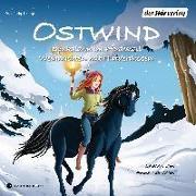Cover-Bild zu Ostwind. Spukalarm im Pferdestall & Weihnachten mit Hindernissen