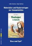 Cover-Bild zu Flaschenpost in Sütterlin. Begleitmaterial von Klöckner, Katrin