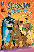 Cover-Bild zu Fisch, Sholly: Scooby-Doo Team-Up