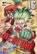 Cover-Bild zu Dr. Stone 16 von BOICHI