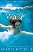 Cover-Bild zu Wake (eBook) von Hocking, Amanda
