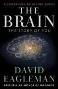 Cover-Bild zu Brain (eBook) von Eagleman, David