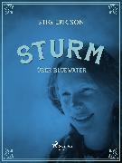 Cover-Bild zu Ericson, Stig: Sturm über Bluewater (eBook)