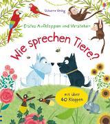 Cover-Bild zu Erstes Aufklappen und Verstehen: Wie sprechen Tiere? von Daynes, Katie