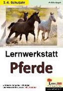 Cover-Bild zu Lernwerkstatt Pferde von Aepli, Edith