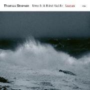 Cover-Bild zu Lucus