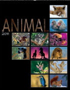 Cover-Bild zu Animal 2011