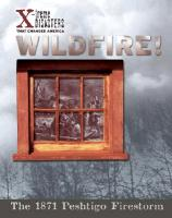 Cover-Bild zu Ball, Jacqueline A.: Wildfire!