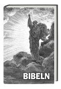 Cover-Bild zu Bibel Serbisch - ???????