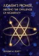 Cover-Bild zu Itzkoff, Seymour W.: Judaism's Promise, Meeting the Challenge of Modernity
