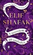 Cover-Bild zu Shafak, Elif: A szerelem 40 szabálya (eBook)