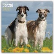 Cover-Bild zu Borzoi - Russischer Wolfshund 2022