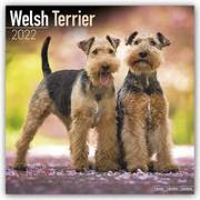 Cover-Bild zu Welsh Terrier 2022 - 18-Monatskalender mit freier DogDays-App