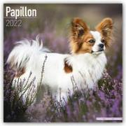 Cover-Bild zu Papillons 2022 - 18-Monatskalender mit freier DogDays-App