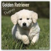Cover-Bild zu Golden Retriever Puppies - Golden Retriever-Welpen 2022 - 18-Monatskalender mit freier DogDays-App