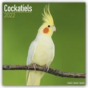 Cover-Bild zu Cockatiels - Nymphensittiche 2022