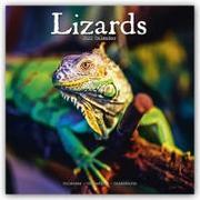 Cover-Bild zu Lizards - Eidechsen 2022