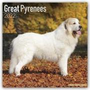 Cover-Bild zu Great Pyrenees - Pyrenäenhunde 2022 - 18-Monatskalender mit freier DogDays-App