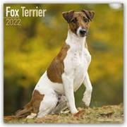 Cover-Bild zu Fox Terriers - Foxterrier 2022 - 18-Monatskalender mit freier DogDays-App