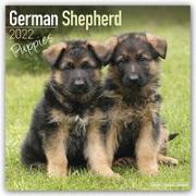 Cover-Bild zu German Shepherd Puppies - Deutsche Schäferhunde - Welpen 2022 - 18-Monatskalender mit freier DogDays-App