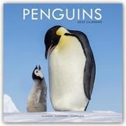 Cover-Bild zu Penguins - Pinguine 2022 - 18-Monatskalender