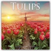Cover-Bild zu Tulips - Tulpen 2022