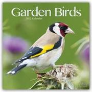 Cover-Bild zu Garden Birds - Gartenvögel 2022 - 16-Monatskalender