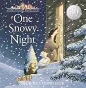 Cover-Bild zu One Snowy Night von Butterworth, Nick