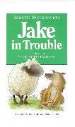 Cover-Bild zu Jake In Trouble von Butterworth, Annette