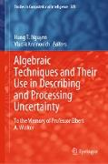 Cover-Bild zu Nguyen, Hung T. (Hrsg.): Algebraic Techniques and Their Use in Describing and Processing Uncertainty (eBook)