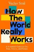 Cover-Bild zu Smil, Vaclav: How the World Really Works (eBook)