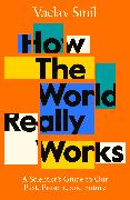 Cover-Bild zu Smil, Vaclav: How the World Really Works