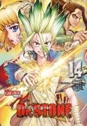 Cover-Bild zu BOICHI: Dr. Stone 14