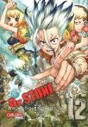 Cover-Bild zu BOICHI: Dr. Stone 12