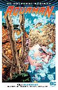 Cover-Bild zu Abnett, Dan: Aquaman Vol. 1: The Drowning (Rebirth)