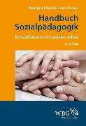Cover-Bild zu Handbuch Sozialpädagogik (eBook) von Drakos, Georgios
