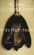 Cover-Bild zu Cunningham, Michael: In die Nacht hinein (eBook)