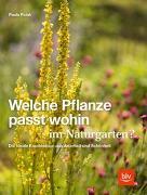 Cover-Bild zu Polak, Paula: Welche Pflanze passt wohin im Naturgarten?