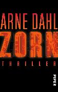 Cover-Bild zu Zorn von Dahl, Arne