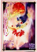 Cover-Bild zu Takeuchi, Naoko: Sailor Moon 3 (Naoko Takeuchi Collection)