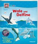 Cover-Bild zu Oftring, Bärbel: WAS IST WAS Junior Band 26. Wale und Delfine