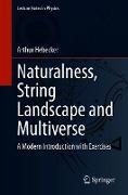 Cover-Bild zu Naturalness, String Landscape and Multiverse (eBook) von Hebecker, Arthur