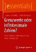 Cover-Bild zu Grenzwerte oder infinitesimale Zahlen? (eBook) von Bedürftig, Thomas