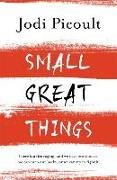 Cover-Bild zu Picoult, Jodi: Small Great Things