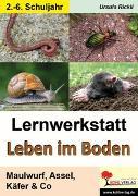 Cover-Bild zu Lernwerkstatt Leben im Boden (eBook) von Rickli, Ursula